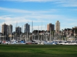 Rushcutters Bay 4