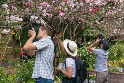 Photography Tours 4