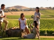winery tours 06