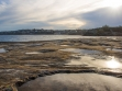 Clovelly Beach 06