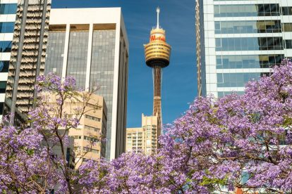 Sydney Tower EYE 03