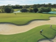 NSW Open Golf Championship 8
